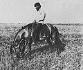 Russischer Photograph um 1900 - Der Verwalter eines Gutes (Zeno Fotografie).jpg