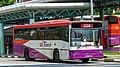SBS Transit Volvo B10M MkIV (DM3500).jpg