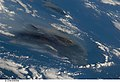 STS125-E-6569 - View of Hawaii.jpg