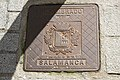 Salamanca Tapa 411.jpg
