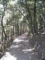 Salerno Arechi-Castle park.jpg