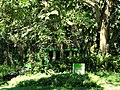 San Juan Botanical Garden - DSC07035.JPG