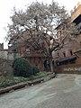 San Salvario, Torino, Italy - panoramio (18).jpg