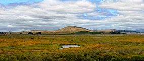 San pablo bay national wildlife refuge 2.jpg