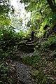 Sanguinho river walk. - panoramio.jpg