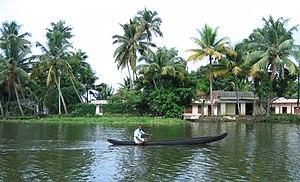 Scenes fom Vembanad lake en route Alappuzha Kottayam127.jpg