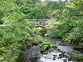 Scotland - Dunvegan Castle 42.JPG