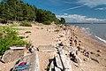 Seabord of Gulf of Finland Primorskoye shosse, 390, Repino, gorod Sankt-Peterburg, Russia.jpg