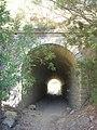 Sendero-embalse-de-Bornos P1420633.jpg
