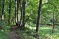 Seneca creek and trail 355 to watkins mill 20200904 102741 1.jpg