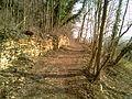 Sentiero Natura - panoramio - ErikIce (2).jpg