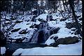 Shenandoah National Park SHEN9177.jpg