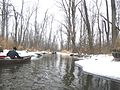 Shiawassee River January 2010.jpg
