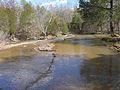 Shoals creek in ozark national forest.jpg