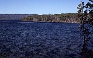 Shoshone Lake Lake in Teton County, Wyoming, USA