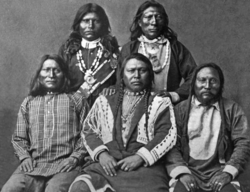 Shoshone group American Indian Mongoloid.png