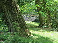 Sikorzyno, park dworski (9).JPG