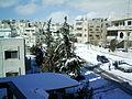 Snow in Amman 4.JPG