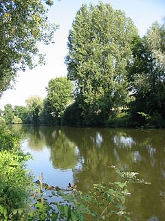 Somme (river) river in Picardy, France