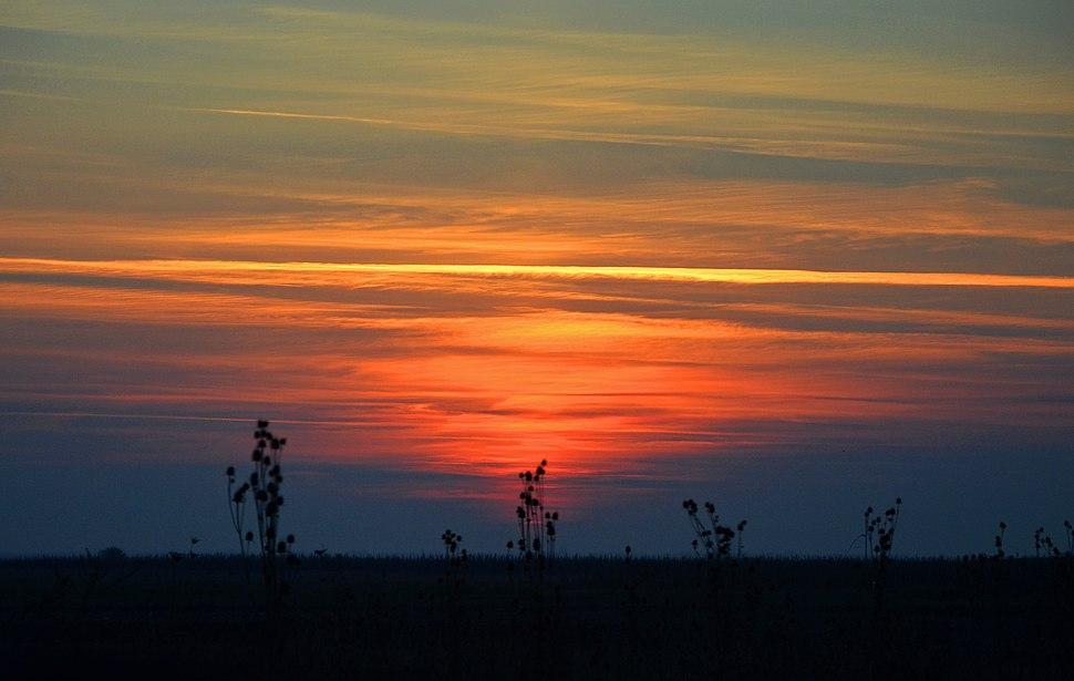 Specijalni rezervat prirode Selevenjske pustare