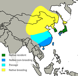 Spodiopsar cineraceus distribution.png