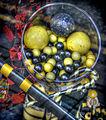 Sport candies (8125287590) (2).jpg