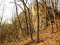 Srbsko, skála nad Bubovickým potokem.jpg