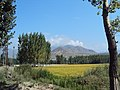 Srinagar - Pahalgam views 07.JPG