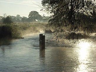 The Saint Stream