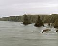 Stacks, Around Duncansby Head, Duncansby Head - panoramio.jpg