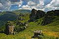 Stara planina21.jpg