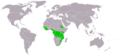 Stephanoaetus coronatus distribution map big.png