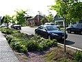 Streetside swale Seattle.jpg