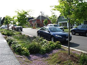 Green infrastructure - Street-side swale and adjacent pervious concrete sidewalk in Seattle, US. Stormwater is infiltrated through these features into soil, thereby reducing levels of urban runoff to city storm sewers.
