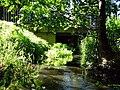 Strehlower-Bach-27-07-2008-015b.jpg