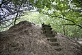 Strubben-Kniphorstbos, archeologisch reservaat, deel van één van de twee schietbanen op voormalig oefenterrein van Defensie - Anloo - 20529543 - RCE.jpg