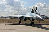 Su-35S 100th Anniversary of Russian Air Force (2).jpg
