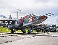 Sukhoi Su-25, Stalin Line (9436031688).jpg