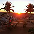 Sunset in Tunisian Desert Douz.jpg