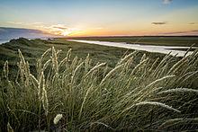 220px-Sunset_in_coastal_region_of_Varde%28kommune%29 Varde on greve strand,