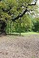 Support for the Major Oak - geograph.org.uk - 1330553.jpg