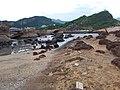 TW 台灣 Taiwan 新台北 New Taipei 萬里區 Wenli District 野柳地質公園 Yehli Geopark August 2019 SSG 129.jpg