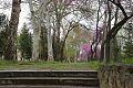 Tashkent park4.jpg