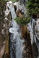 Tatzelwurm (Wasserfall) - Obere Stufe (von oben) 011.jpg