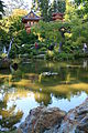 Tea gardens.JPG