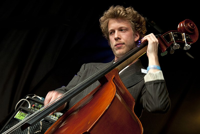 File:Ted Dwane, Mumford and Sons (3785247713).jpg