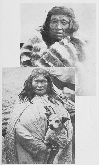 The American Indian Fig 91.jpg