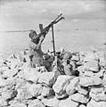 The Polish Independent Carpathian Rifles Brigade in the Siege of Tobruk, 1941 E5565.jpg