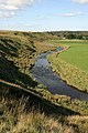 The River Ayr - geograph.org.uk - 982162.jpg