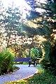 The arboretum - panoramio (3).jpg